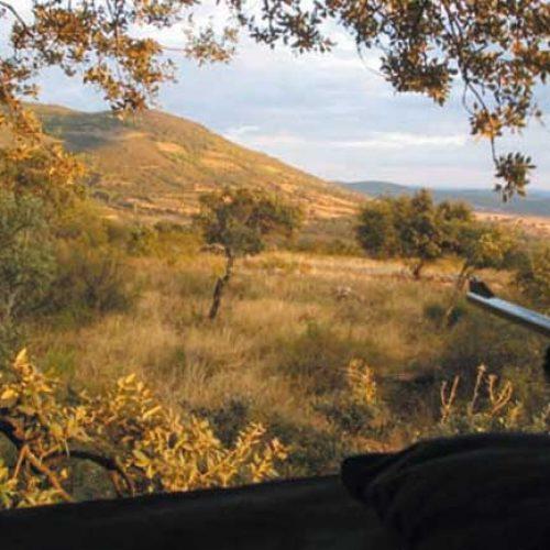 Reforma de la Ley de Caza de Castilla-La Mancha, descontento generalizado