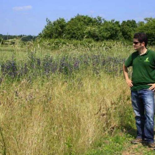 Artemisan lidera el grupo operativo 'Agrohábitat' sobre agricultura sostenible y biodiversidad