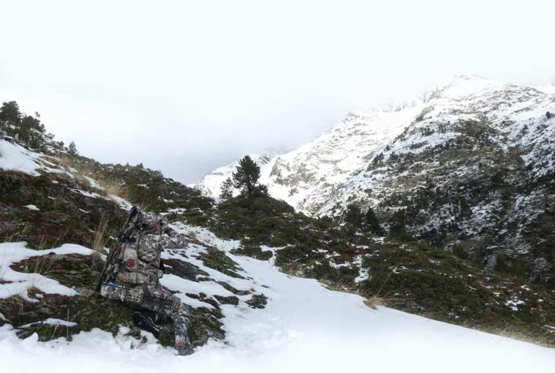Los 7 imprescindibles para un rececho con arco en el pirineo