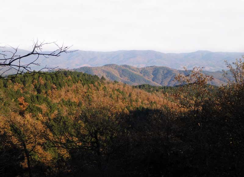 jabalies-turquia-paisaje