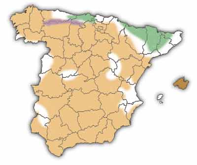 liebre-iberica-mapa