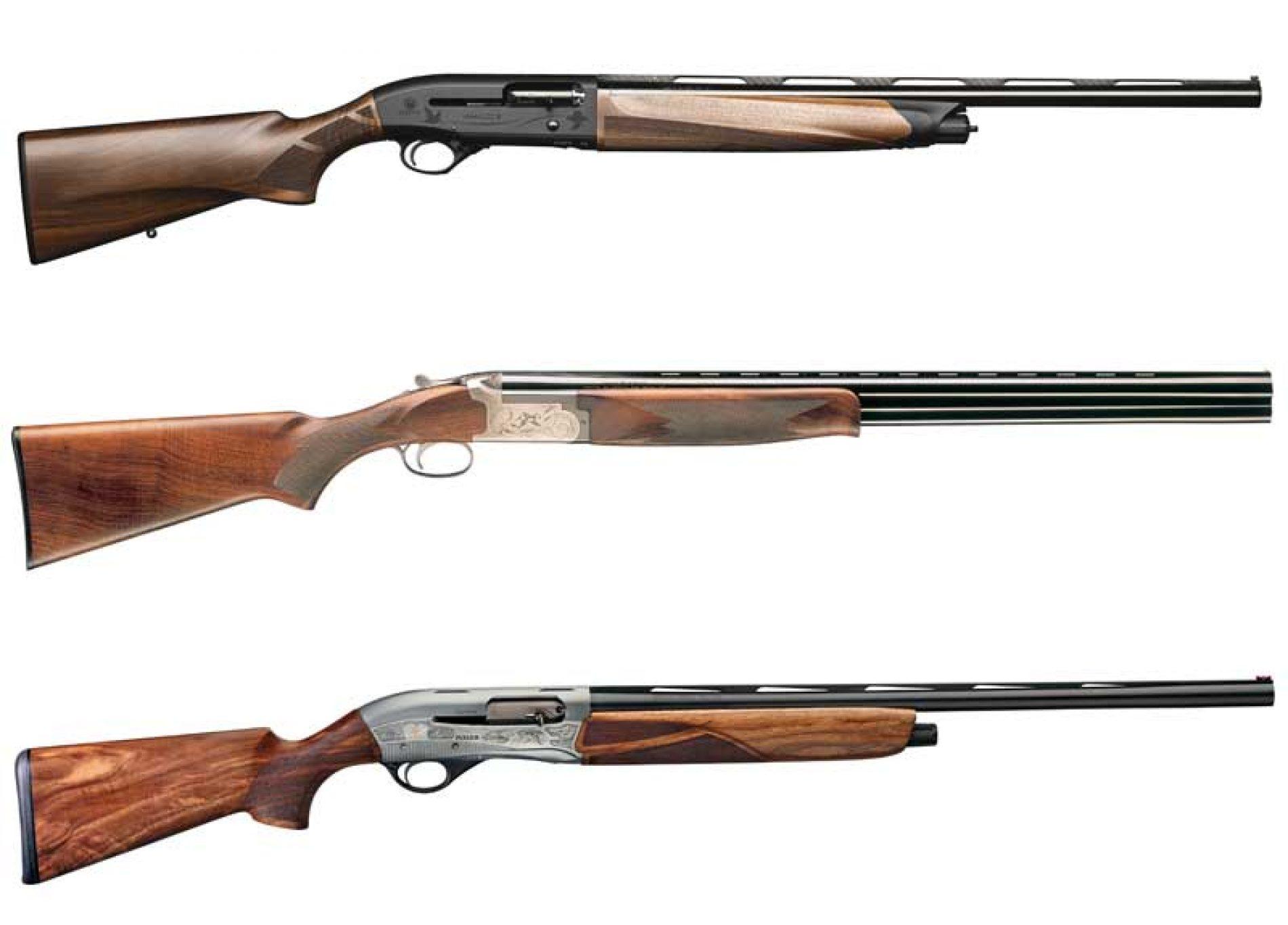 Consejos para elegir el arma y la munición adecuada para la codorniz