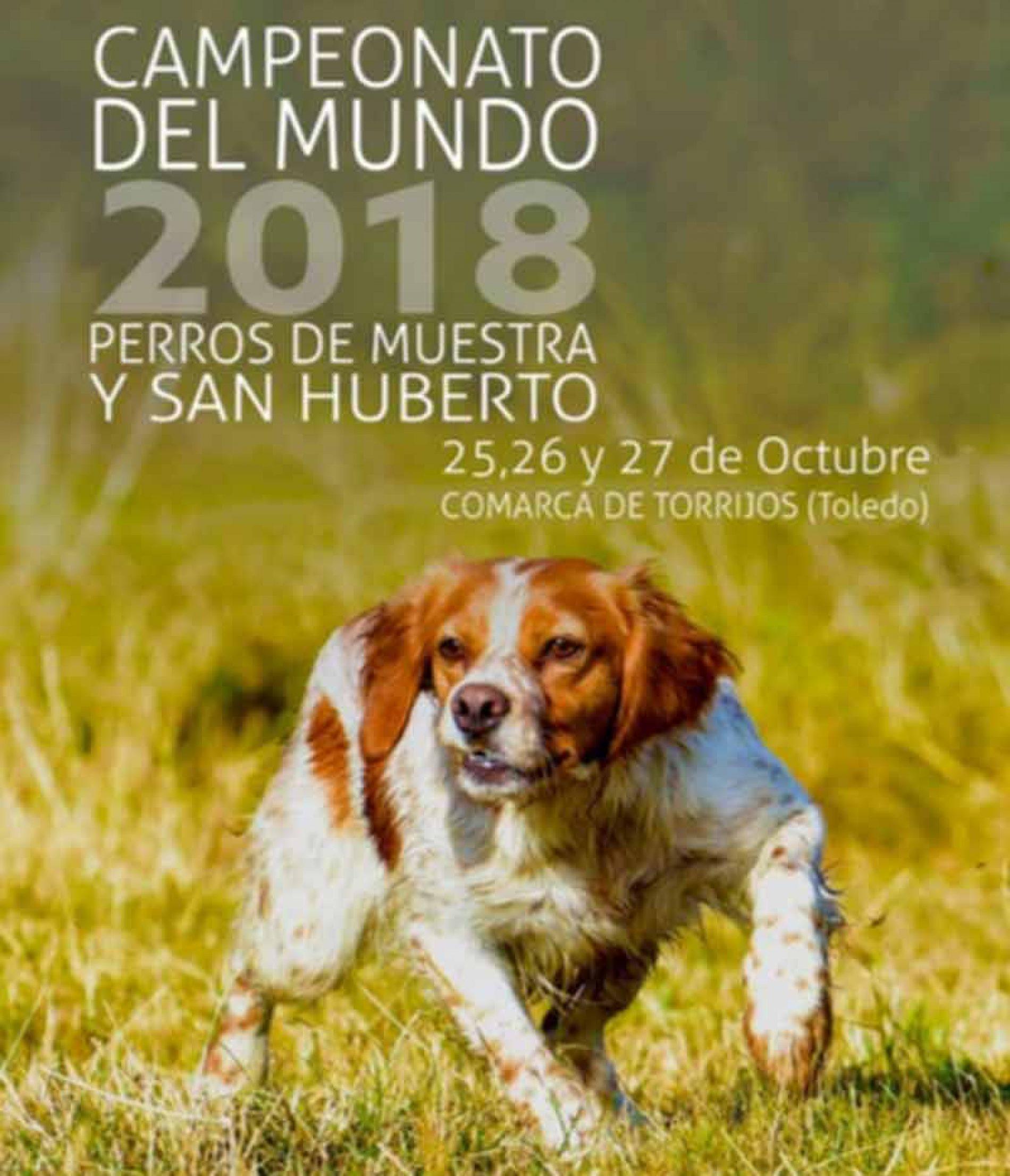 Campeonato del Mundo de Caza San Huberto y de Perros de Muestra