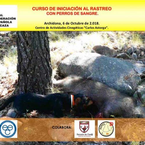 Los secretos sobre el rastreo con perros de sangre en los cursos de la Escuela Española de Caza