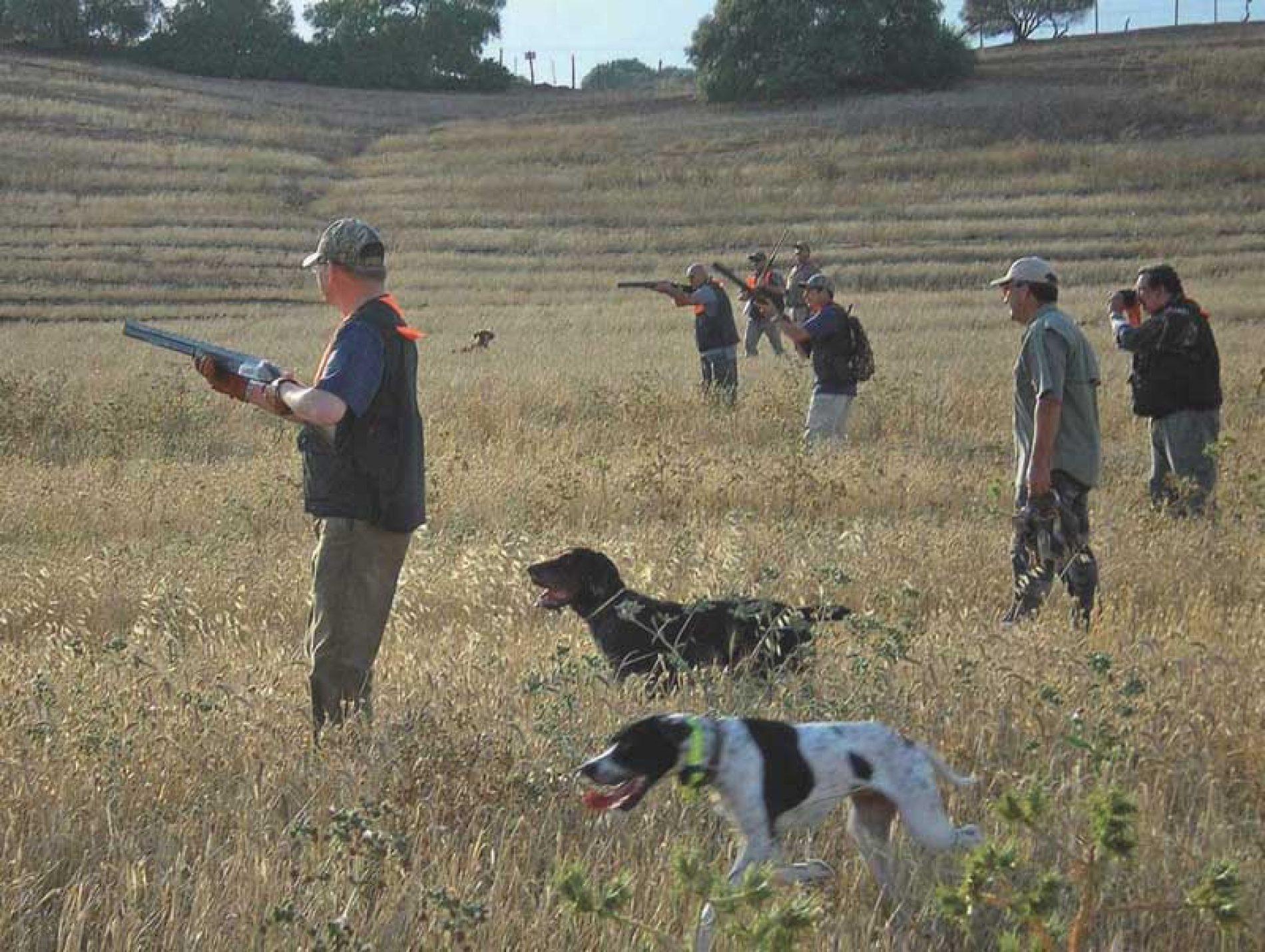 Cómo evitar accidentes cazando, en mano, al salto o desde puesto fijo