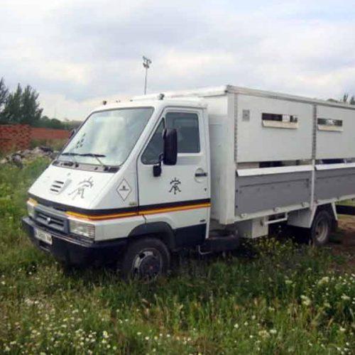 Novedades en Andalucía sobre el transporte de rehalas