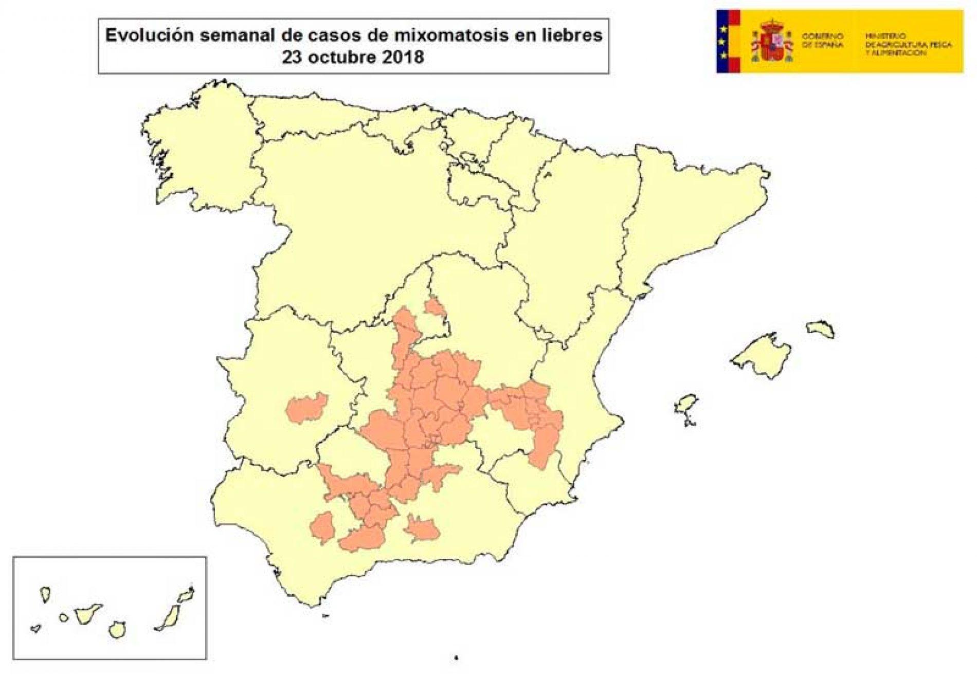 La mixomatosis alcanza ya a liebres de 12 provincias en 5 comunidades