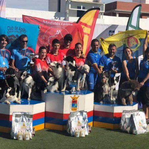Éxito de participación en el V Campeonato de España de Agility