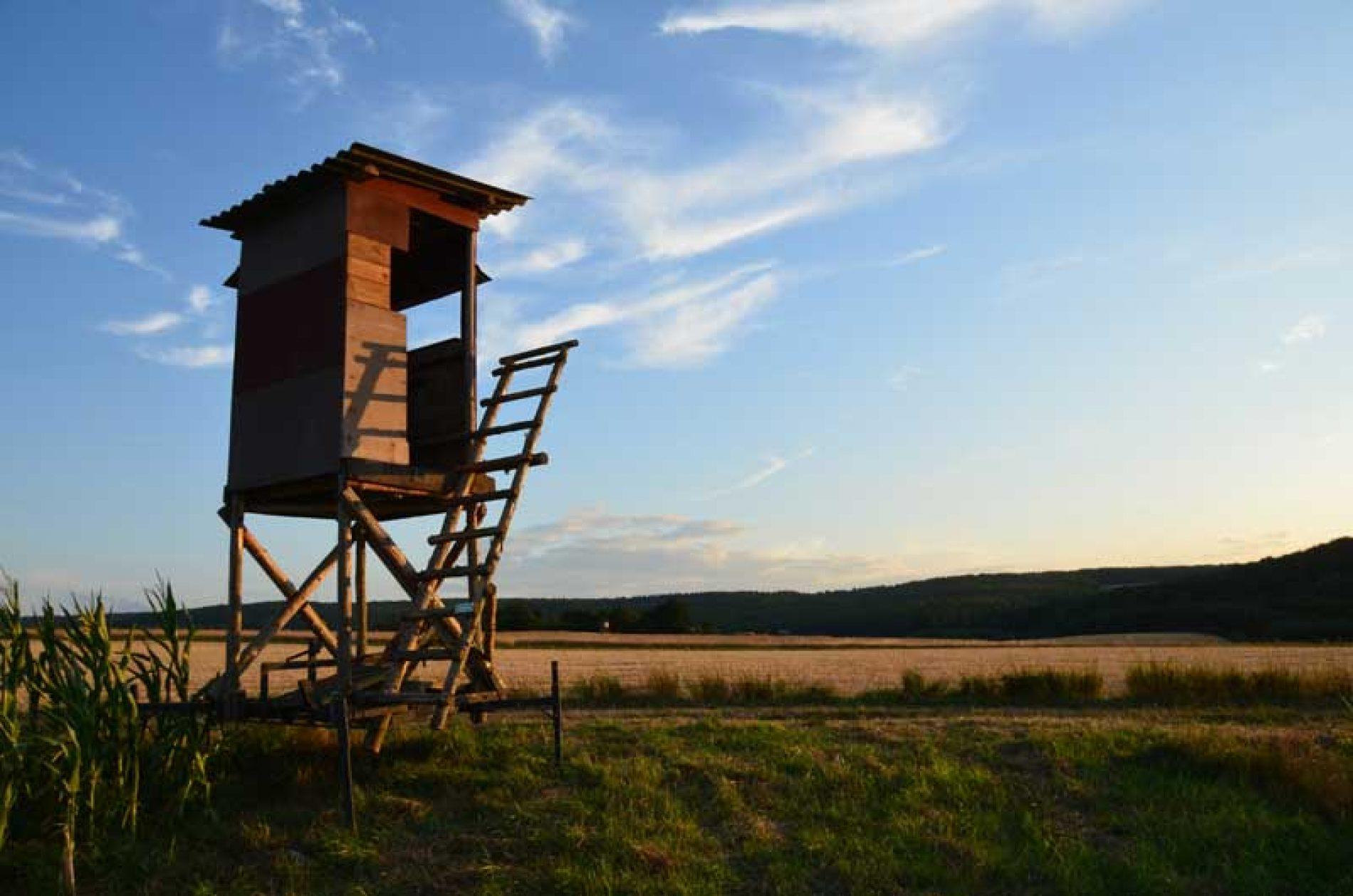 Análisis de la Ley de Caza de Castilla La Mancha