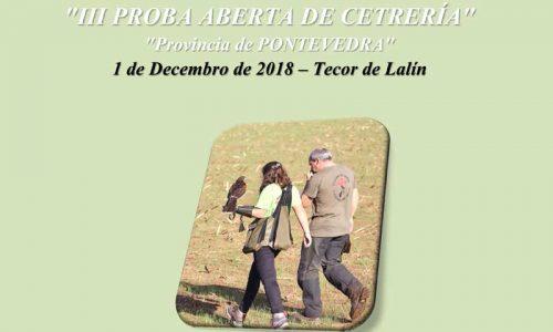 III Prueba abierta de cetrería en Pontevedra