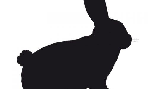 Receta de Conejo a la fenicia