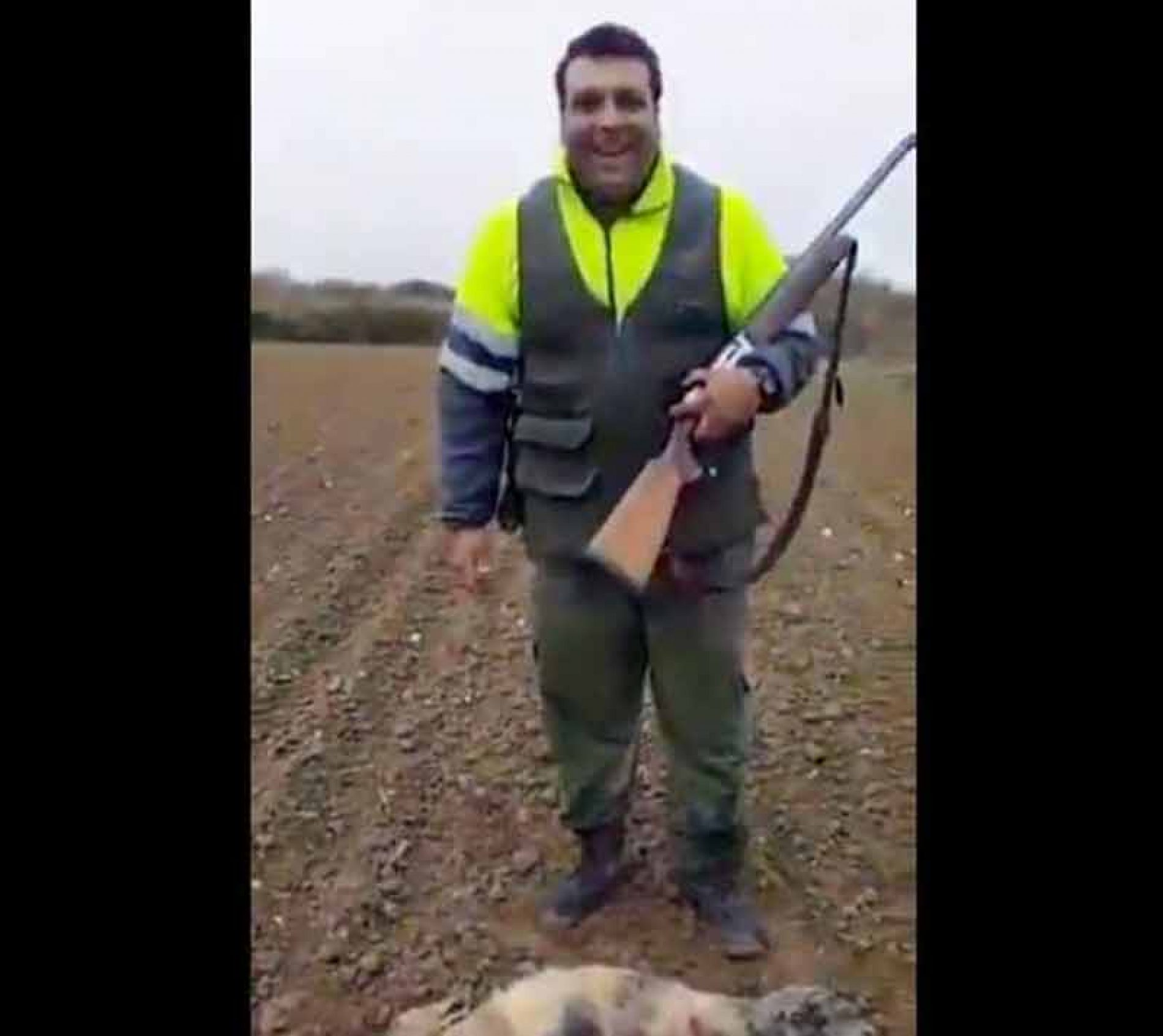 La RFEC prepara una denuncia contra el individuo que maltrata un zorro en un vídeo