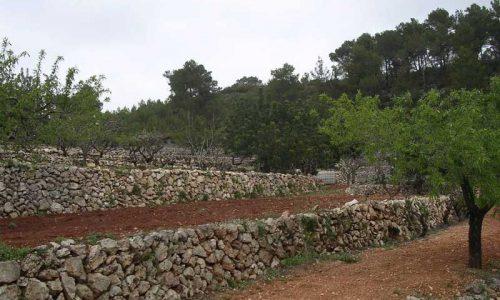 Los muros de piedra seca son declarados Patrimonio de la Humanidad