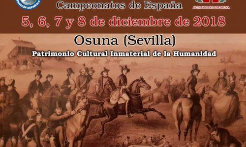 La cetrería tiene una cita en Osuna en los Campeonatos de España 2018