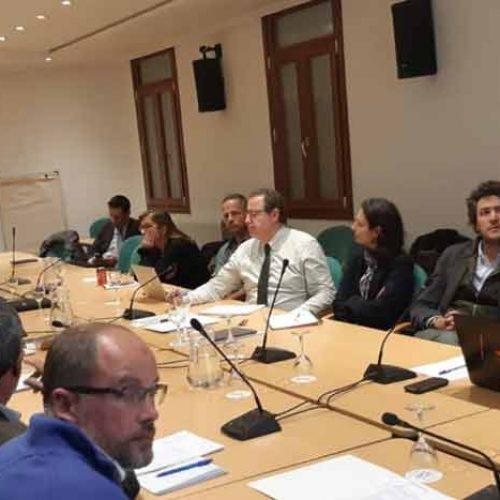 RFEC, Ministerio de Agricultura y Comisión Europea  trabajando contra la peste porcina