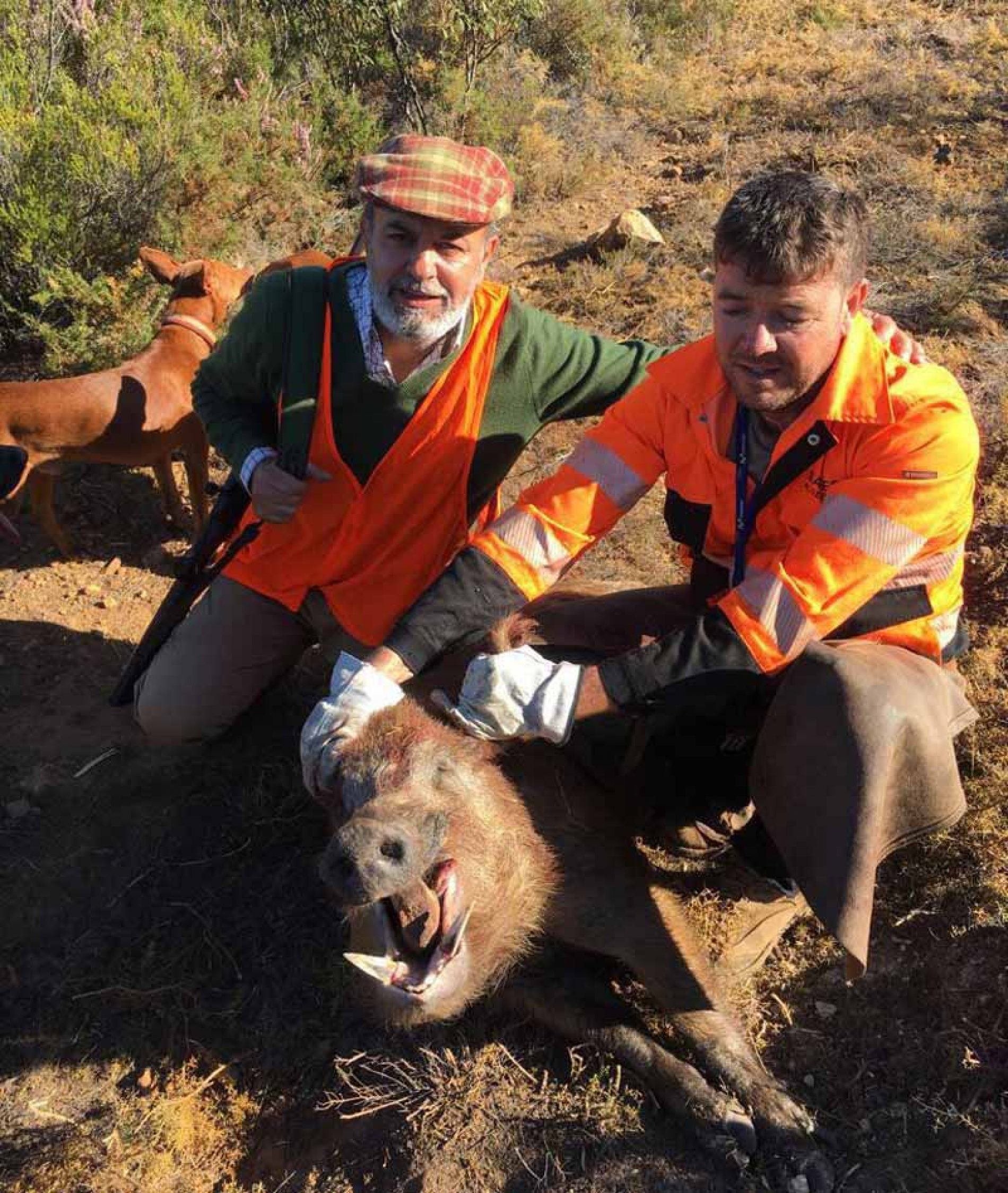 En Valle Prieto, Buen día de caza, con un buen número de disparos