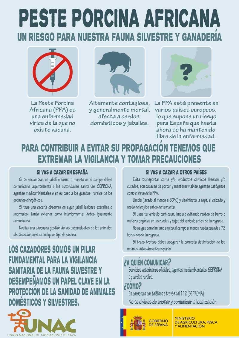 infografia-ppa