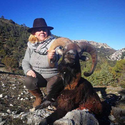 Muy baja la calidad de las reses en la montería La Losa