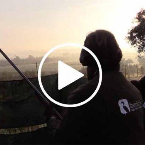 Vídeo Zorzales con Antonio Mancha