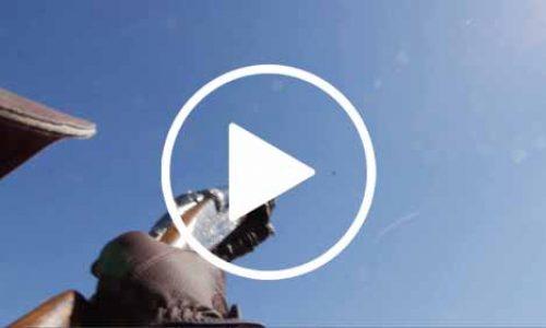 Vídeo Ojeo de Perdices con Cacerías Campo de Montiel