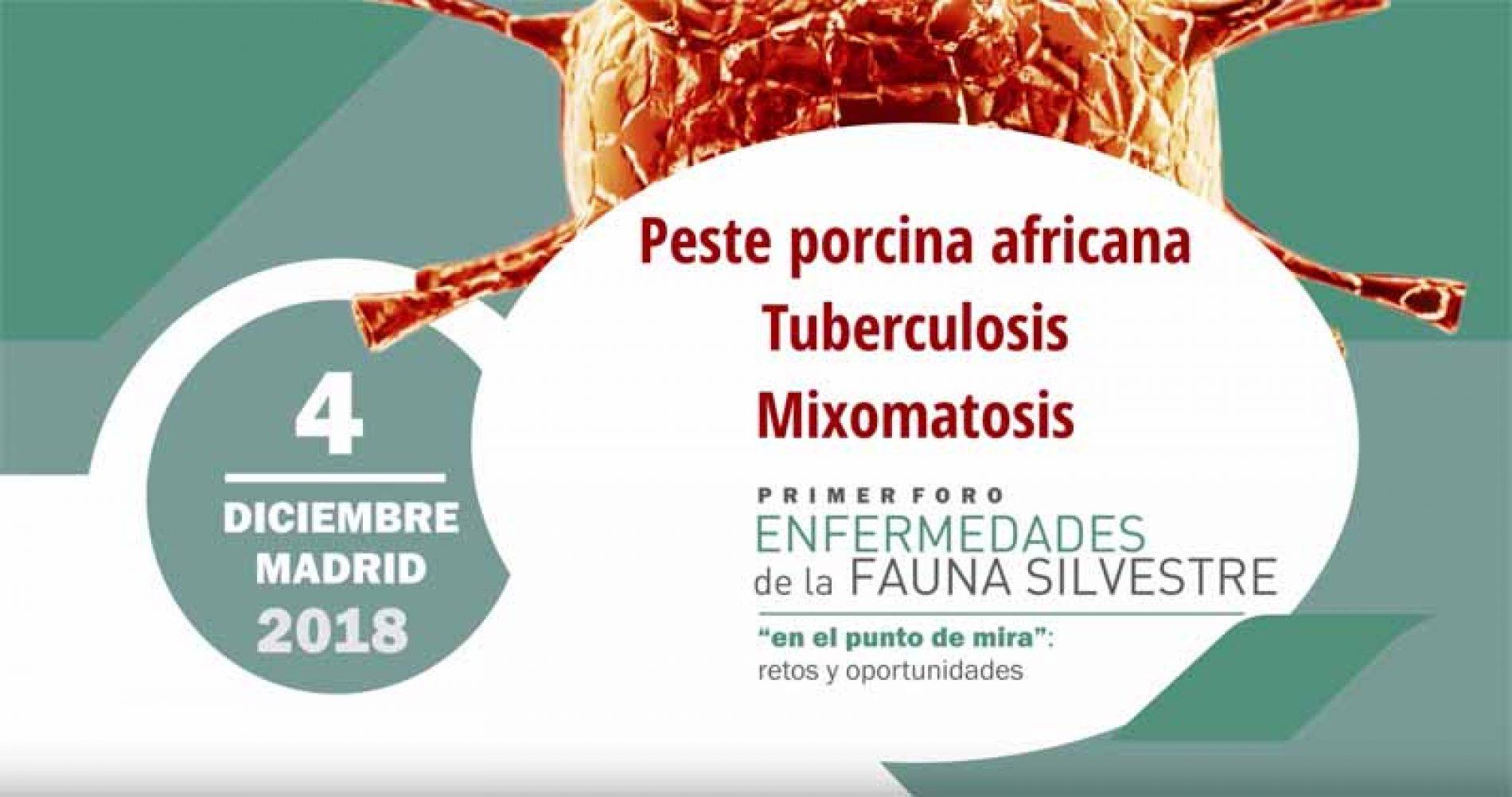 Resumen y Conclusiones del I Foro de Enfermedades de la Fauna Silvestre