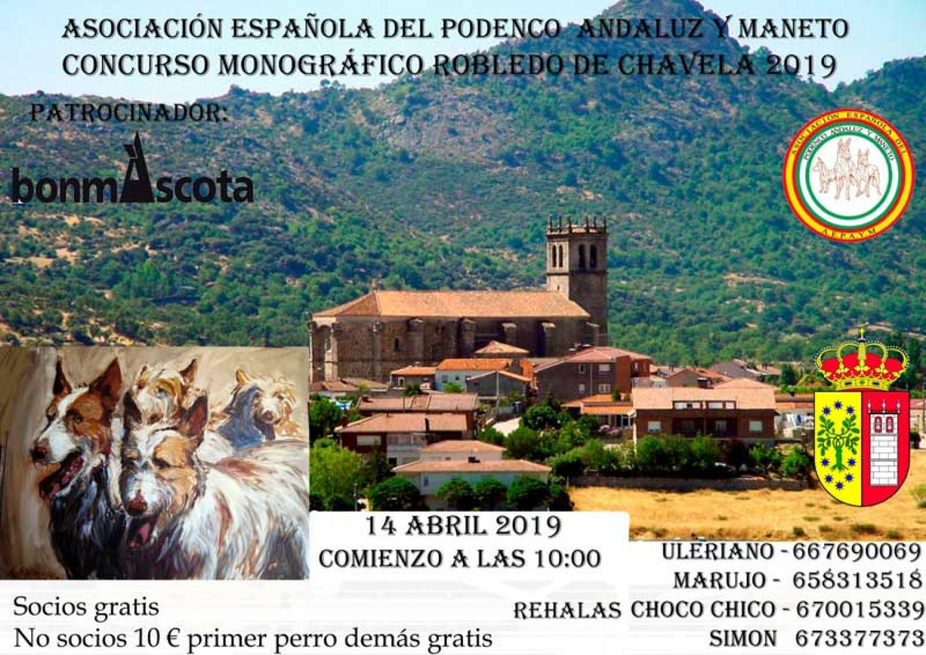 Inscríbete ya en el Concurso Monográfico del Podenco Andaluz y Maneto