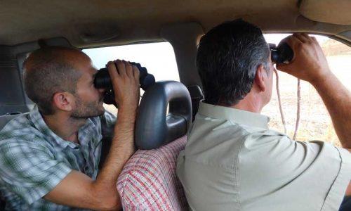 Fundación Artemisan lanza su campaña de conteos de perdiz roja