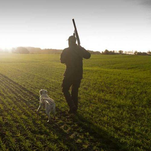 El 1 de abril se volverá a cazar en Castilla y León tras la publicación de la nueva ley