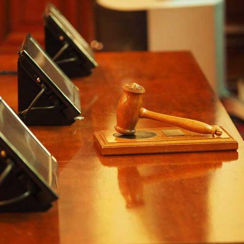 El TSJ de Castilla y León desestima la petición del PACMA de notificar personalmente el Auto de suspensión del Decreto a los parlamentarios que instaron la modificación de la Ley de Caza para blindar la actividad cinegética