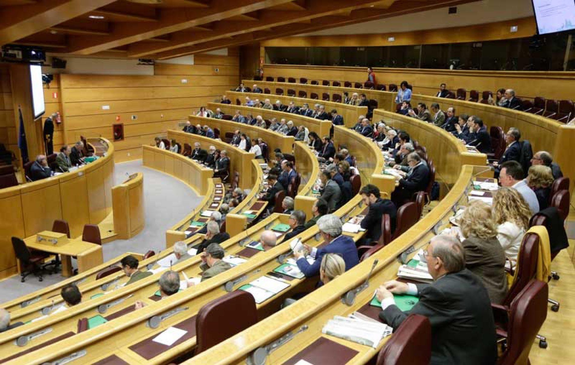 La RFEC defiende la tradición cinegética en el I Simposio Internacional 'Los hombres y los animales: un debate de sociedad y una cuestión de derechos'