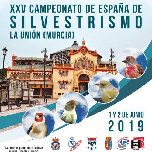 XXV Campeonato de España de Silvestrismo