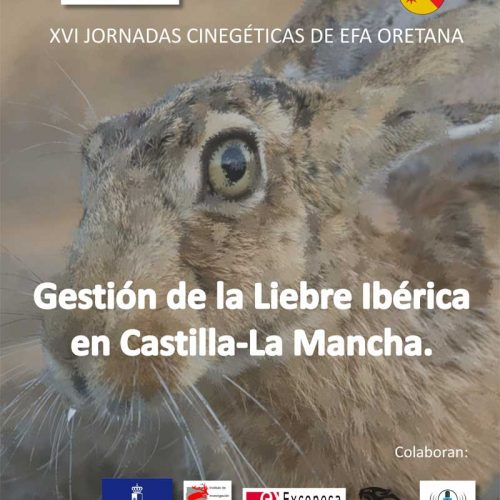 XVI Jornadas Cinegéticas, Gestión de la Liebre Ibérica en Castilla-La Mancha.