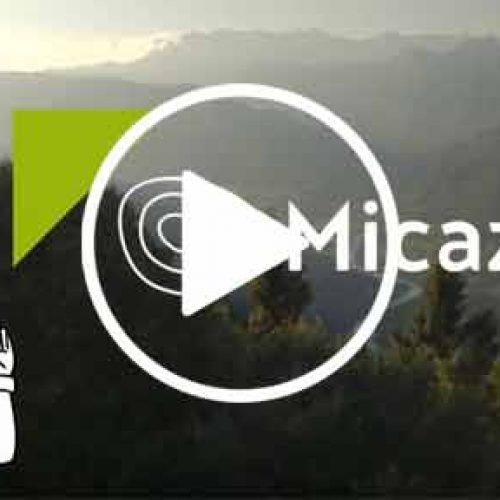 App Micaza, toda Micaza en tu mano