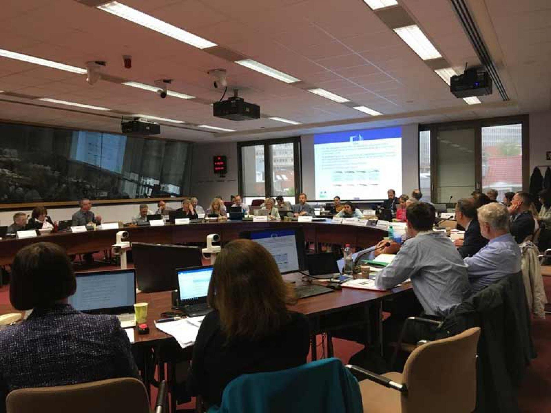 Artemisan defiende ante la UE la modificación de los periodos hábiles de veda de migratorias