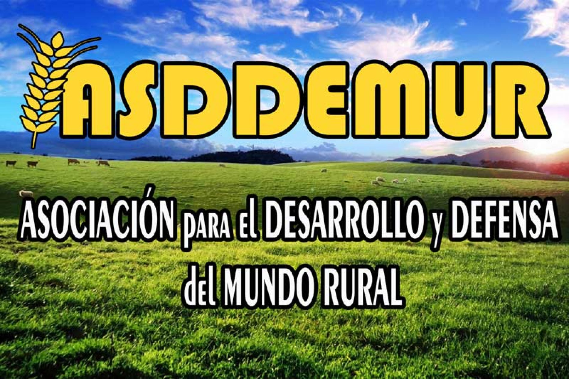 ASDDEMUR, celebra su primera Asamblea Extraordinaria Informativa.