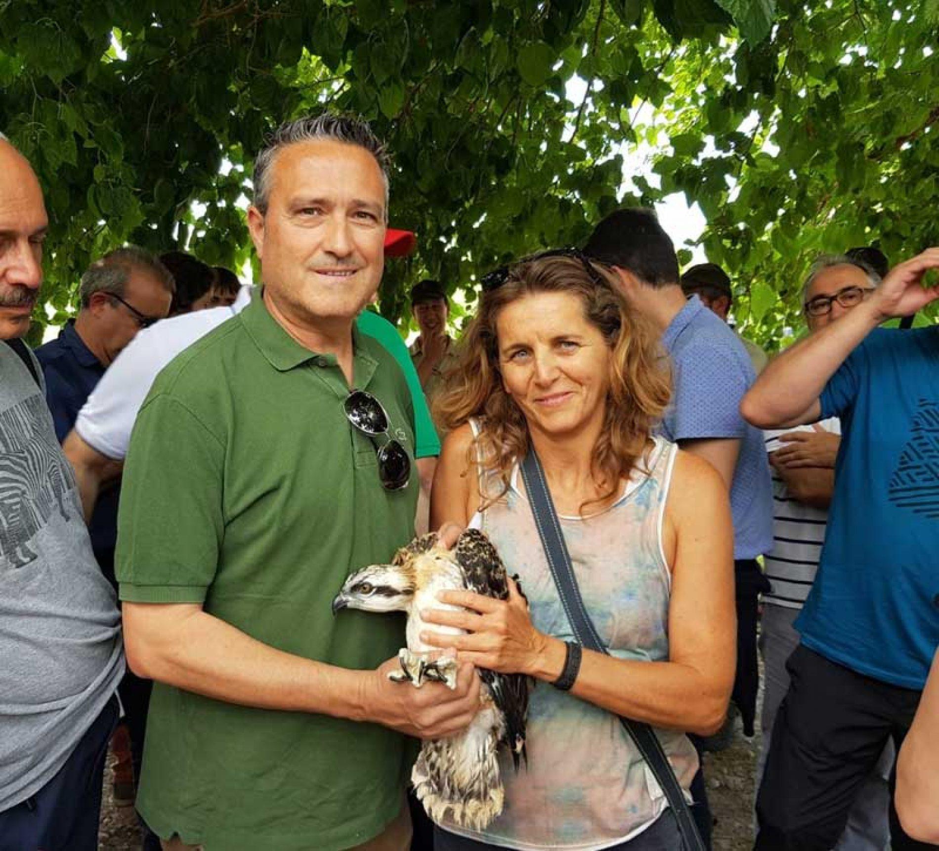 La Federación de Caza de la Comunidad Valenciana presente en el acto de acogida de las primeras crías de águila pescadora