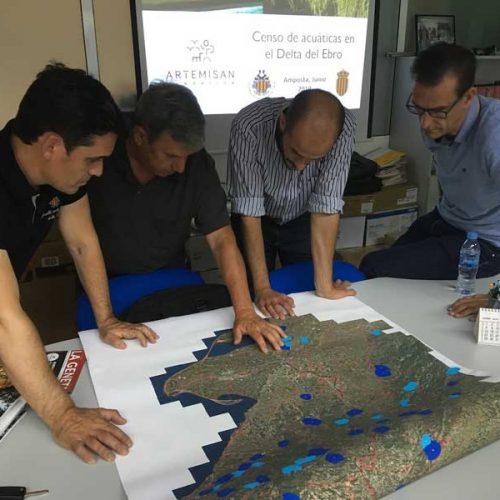 Las especies cinegéticas acuáticas, a estudio en el Delta del Ebro