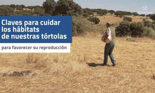 Artemisan apuesta por gestionar el hábitat y favorecer la reproducción de la tórtola