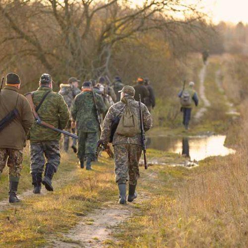 La ONC reclama al Defensor del Pueblo que garantice la seguridad jurídica y la libertad de los cazadores de Castilla y León