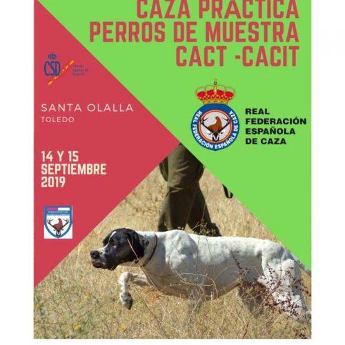 Últimos días de inscripción para el Campeonato de España de Caza Práctica – Perros de Muestra 2019