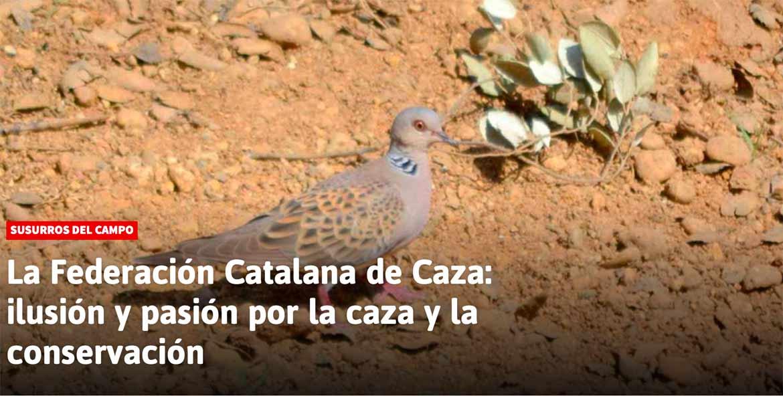 Post-Federacion-Catalana