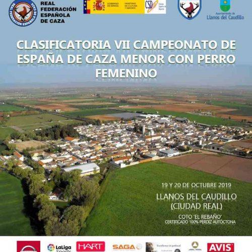 El pase a la final del VII Campeonato de España de Caza Menor con Perro Femenino se decide este fin de semana