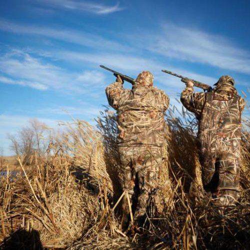 El Tribunal Supremo respalda la legalidad de la figura del 'cazador formado' dando la razón a la RFEC