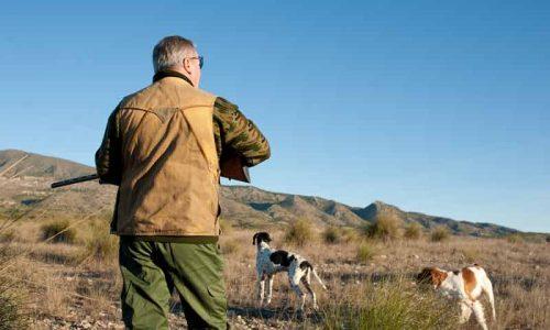 FEDEXCAZA se personará en el caso de la muerte de 46 perros en Tierra de Barros