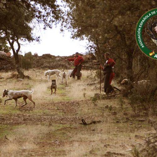 La Asociación Española de Organizadores de Monterías entra a formar parte de la ONC