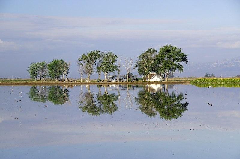 1599px-Reflejos_en_el_Delta_del_Ebro
