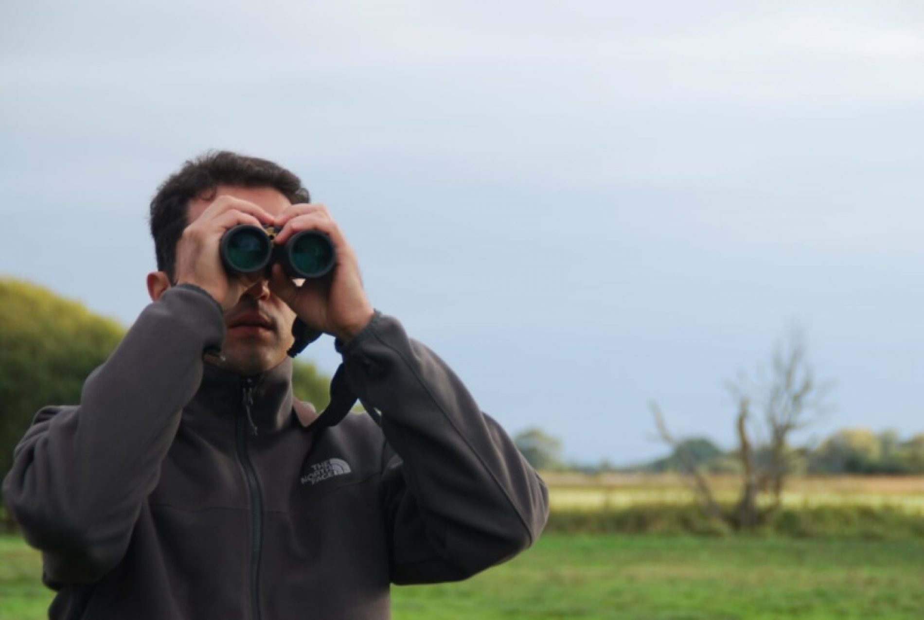 Artemisan pone en marcha un proyecto sobre el estado de las aves cinegéticas en la Comunidad de Madrid