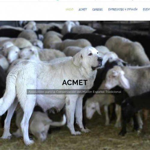 Asociación para la conservación del mastín español lanza su web