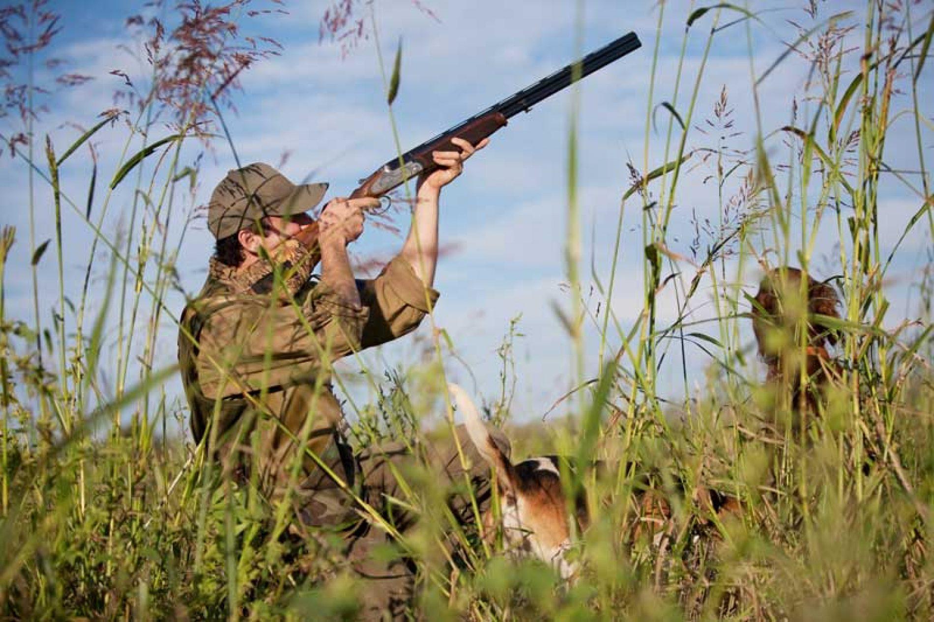 El sector cinegético de CLM pide cambiar más del 40% del articulado del rglto. de caza