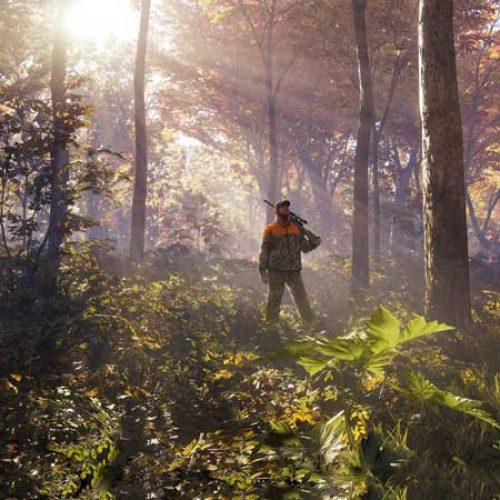 En tiempos de cuarentena…caza virtual